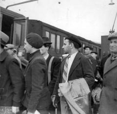 fiano nedo,auschwitz,vagoni bestiame,deportazione,carrozze passeggeri